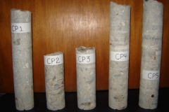 Ensaios de Carbonatação líquido penetrante